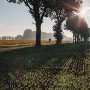 Landschaftsbild aus dem Muensterland