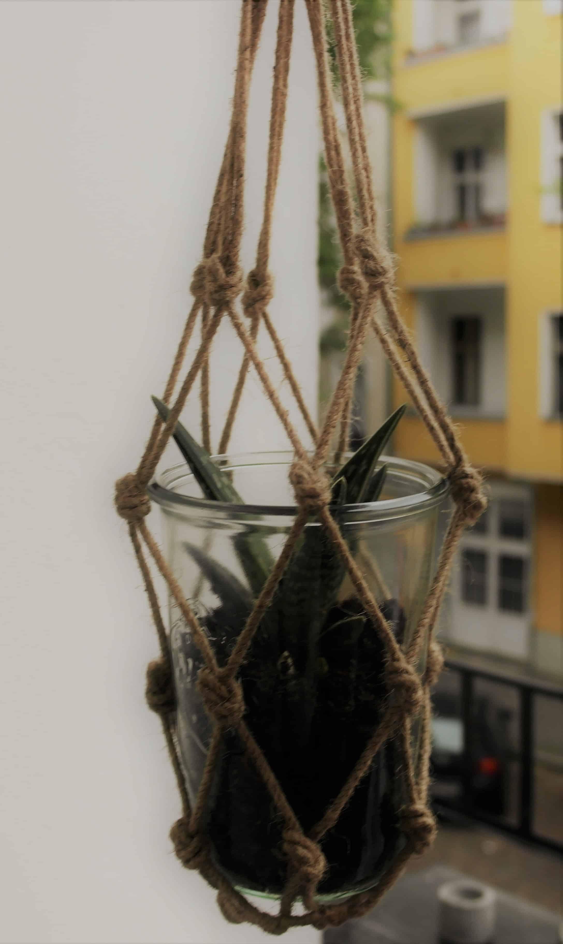 Blume mit Erde in Weckglas gepflanzt und in Blumenampel hängend